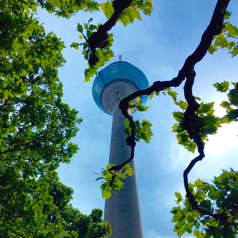 Rhine tower in Düsseldorf viewed through branches of the trees